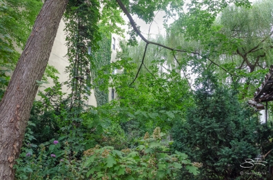 20120728 Lower East Side Ecology Center 49