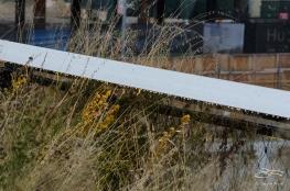 2012-10-15 High Line 18