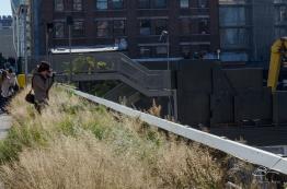2012-10-16 High Line 03