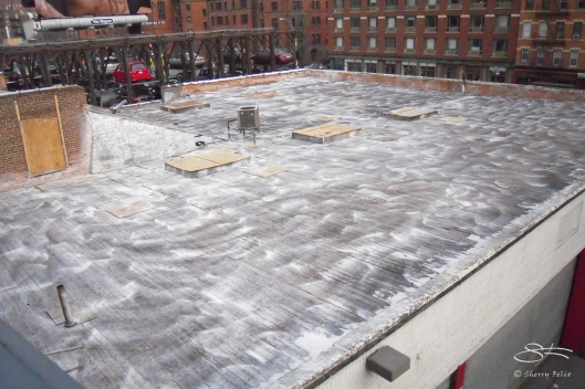 2012-12-30 High Line 15