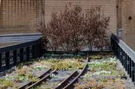 2013-04-04 High Line 03