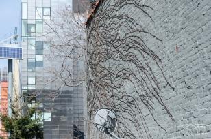 2013-04-04 High Line 14