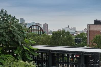 2013-07-25 High Line