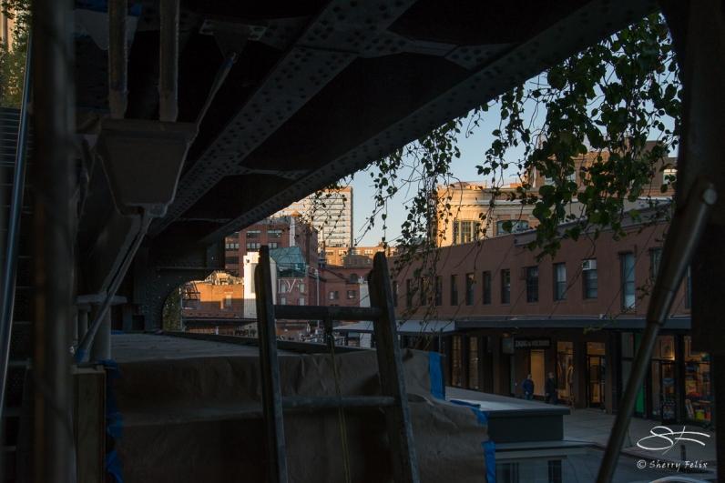 2013-10-26 High Line