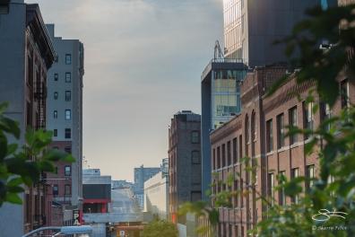 2014-08-20 High Line 06
