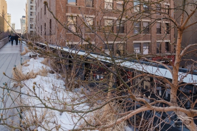 2015-03-09 High Line 09