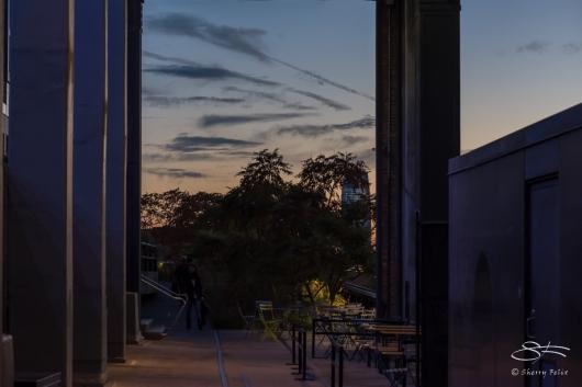 2015-10-14 High Line 47