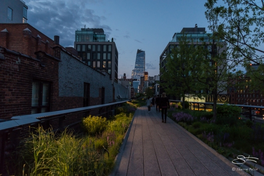2016-05-08 High Line 29