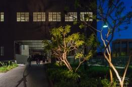 2016-05-08 High Line 45