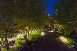 2016-05-08 High Line 48