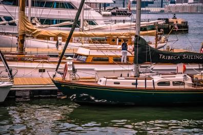 North Cove Yacht Harbor, NYC 6/4/2016