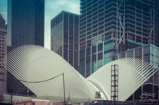 World Trade Center Transportation Hub, NYC 6/4/2016