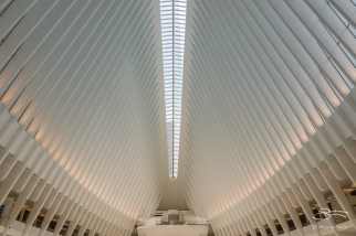 Oculus, WTC Transportation Hub, NYC 6/4/2016