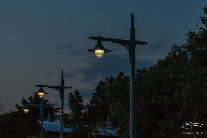 Lamps along the Hudson 6/18/2016