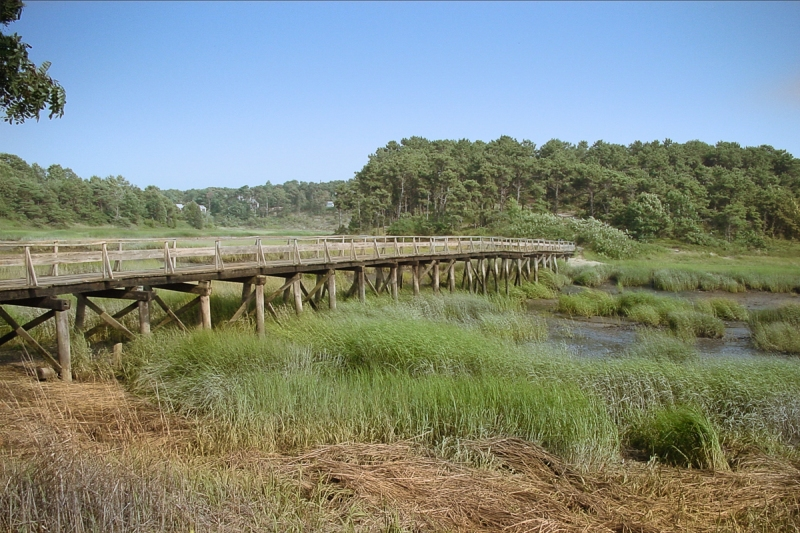 Duck Creek, WEllfleet, Cape Cod 7/23/2002