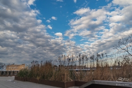 High Line sky 2/19/2017