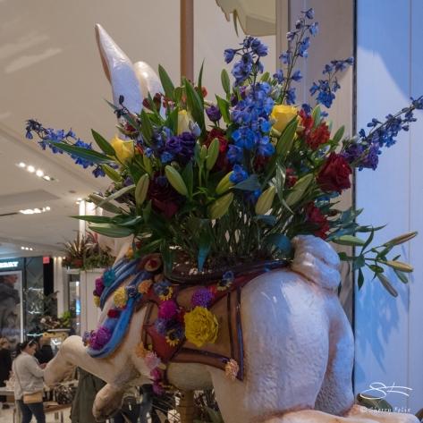 Macy's Flower Show, New York City 4/2/2017