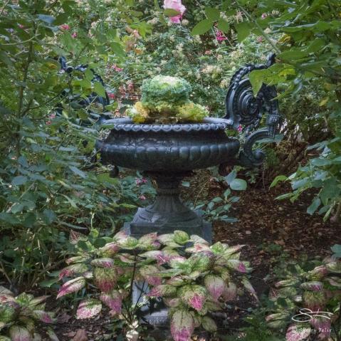 St Luke's Garden NYC 11/4/2017