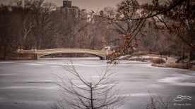 Bow Bridge 1/19/2018