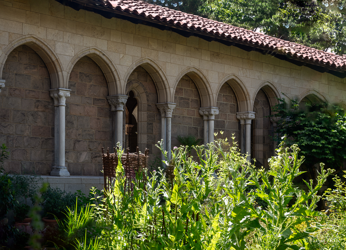 20180621_Cloisters-Heavenly-Bodies_54-sf