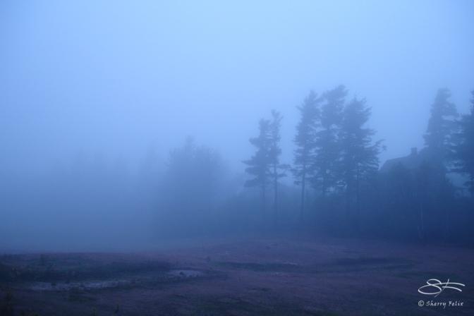 Fog at Loon Lake 9/17/2005