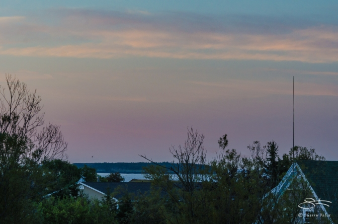 Grand Manan Island, Canada 9/4/2012