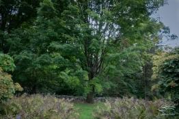 Stonecrop Gardens, Cold Spring, NY 9/20/2018