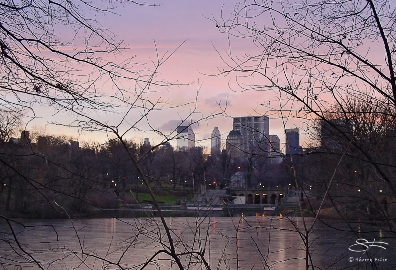 Dawn In Central Park